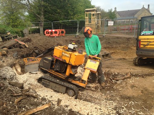 Residential Tree & Stump Removal – Newcastle